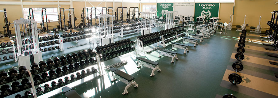 Gaining Weight Outside the Weight Room - Colorado State University ...